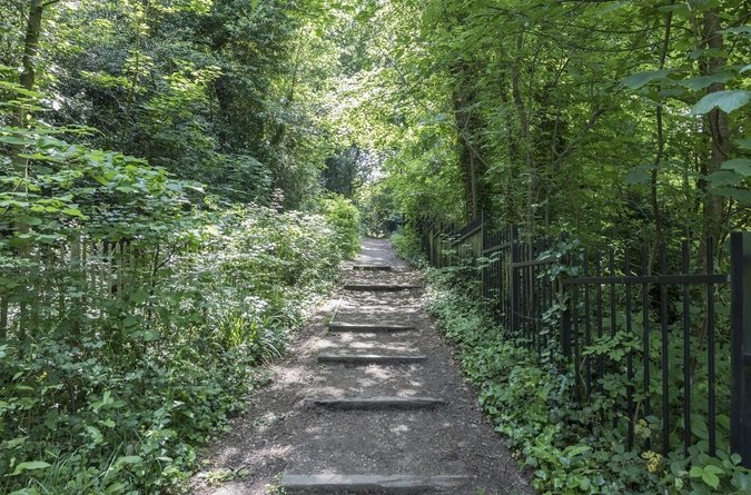 Area Guide Sydenham & Forest Hill Parks & Green Spaces Cox's Walk And Sydenham Hill Wood
